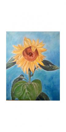 owv-sonnenblume