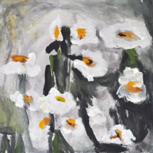 weiße Rosen 20x20